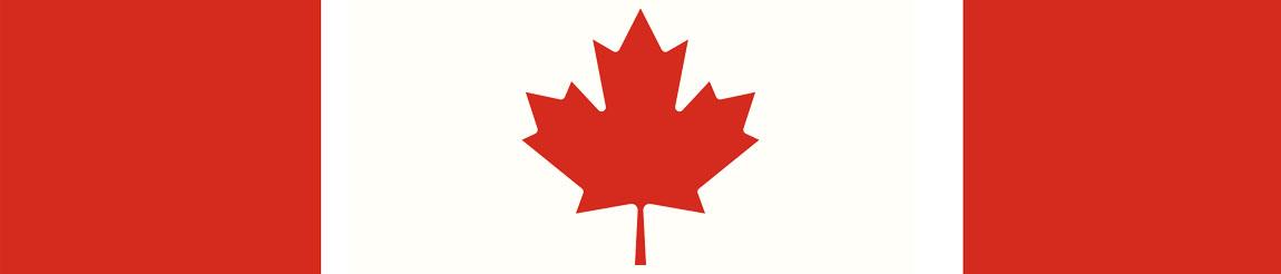 Illustration pour l'article sur les élections anticipées au Canada 2021 sur Démocratie Quotidienne